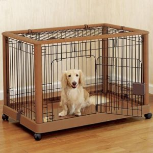 how to crate train dog