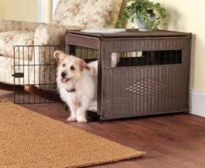 Crate Train a Puppy